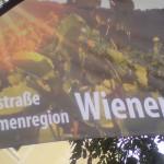 Weinstraße 2011