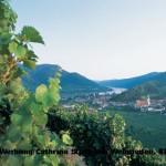 ©Niederösterreich-Werbung/Cathrine Stukhard, Weinrieden, Blick auf Spitz an der Donau