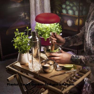 smart garden mini gew chshaus von plantui sempre. Black Bedroom Furniture Sets. Home Design Ideas